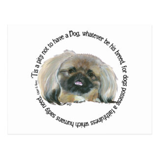 Pekingese Wisdom - Pity not to have a Dog Postcard