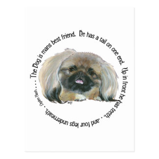 Pekingese Wisdom - The Dog is Man's Best Friend Postcard