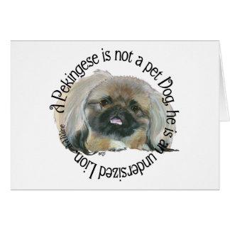 Pekingese Wisdom - Undersized Lion ! Card