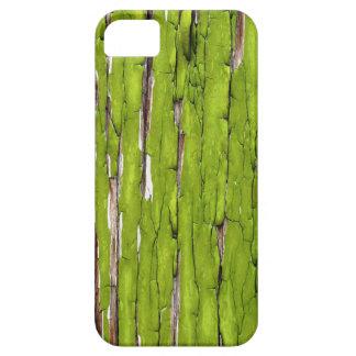 Peladura de la pintura verde iPhone 5 fundas