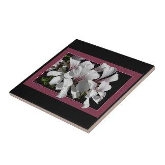 Pelargonium Azulejos Ceramicos