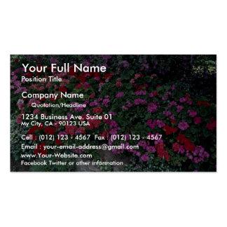 Pelargonium bed business card templates