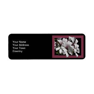 Pelargonium Label