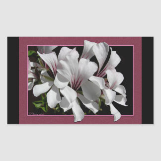Pelargonium Rectangular Stickers