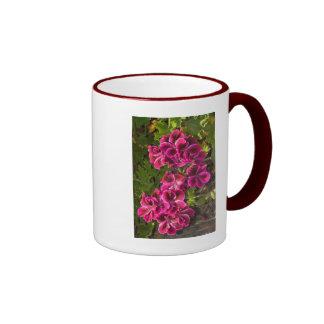 Pelargonium Tazas