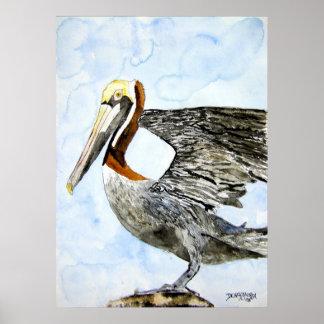 pelican_4_bird_painting poster