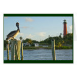 Pelican and Lighthouse Greeting Card