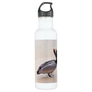 Pelican at the beach 24oz water bottle