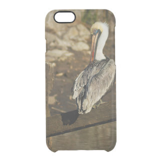 Pelican at the Harbor Clear iPhone 6/6S Case