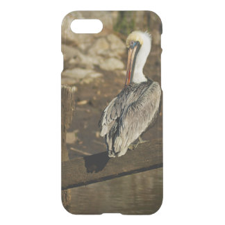 Pelican at the Harbor iPhone 7 Case