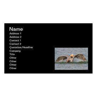Pelican Bath Time Business Card