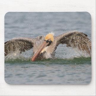Pelican Bath Time Mouse Pad