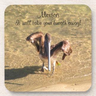 Pelican Bathtime; Mexico Souvenir Beverage Coaster