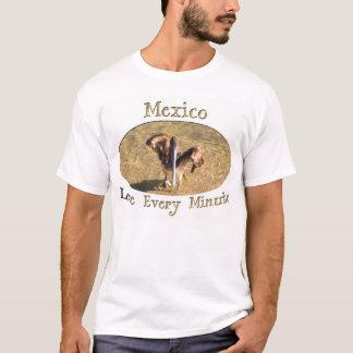 Pelican Bathtime; Mexico Souvenir T-Shirt