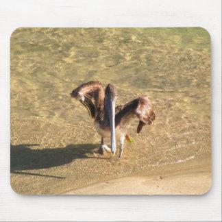 Pelican Bathtime Mouse Pad