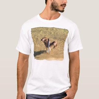 Pelican Bathtime T-Shirt