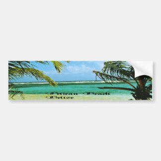 Pelican Beach Belize Bumper Sticker