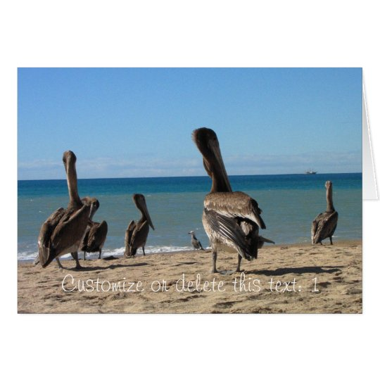 Pelican Beach Bums; Customizable Card