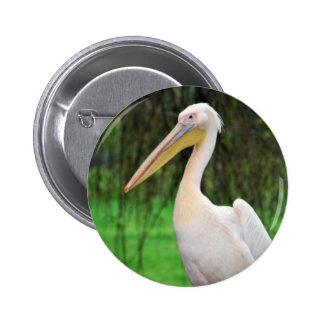 Pelican Beauty Pins