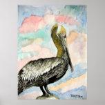 pelican_bird_2 posters