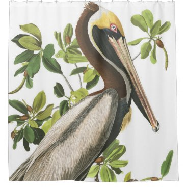 Beach Themed Pelican Bird Audubon Wildlife Shower Curtain