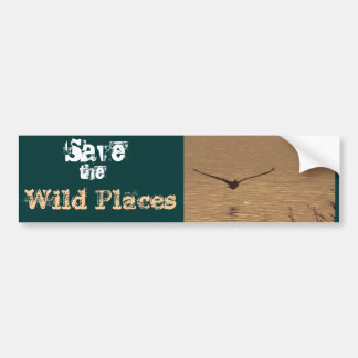 Pelican Bird Wildlife Animal Ocean Beach Bumper Sticker