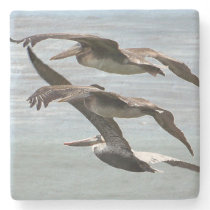 Pelican Bird Wildlife Beach Animal Stone Coaster