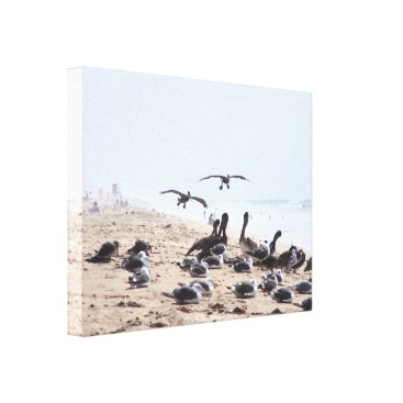 Beach Themed Pelican Birds Wildlife Animals Beach Canvas Print