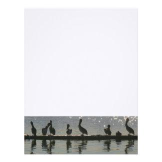 Pelican Birds Wildlife Animals Beach Letterhead