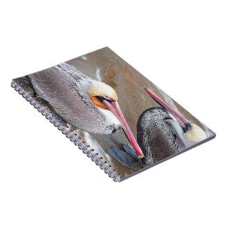Pelican Birds Wildlife Animals Notebook