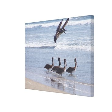 Beach Themed Pelican Birds Wildlife Animals Ocean Canvas Print