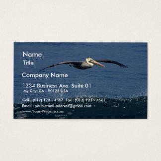 Pelican Business Card