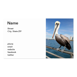 Pelican Business Card