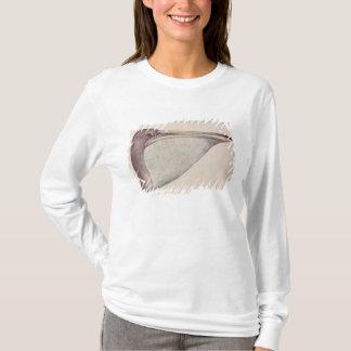 Pelican, c.1590 T-Shirt