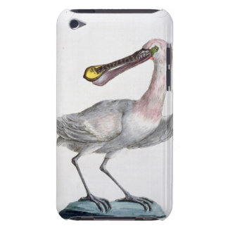 Pelican, c.1767-76 (hand coloured engraving) iPod touch Case-Mate case