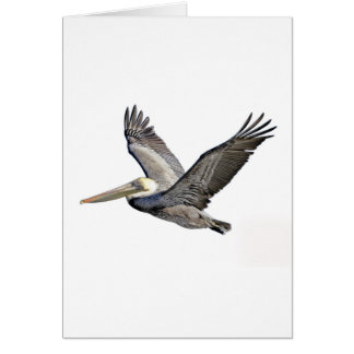 Pelican Clear Greeting Cards