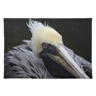 pelican close up head view bird placemat