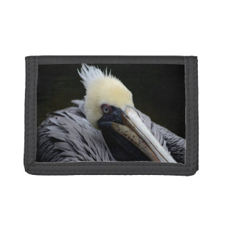 pelican close up head view bird trifold wallets