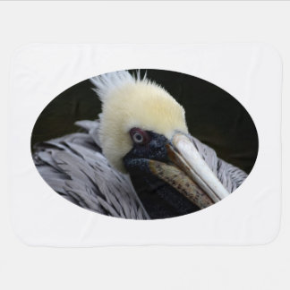 pelican close up head view bird stroller blanket