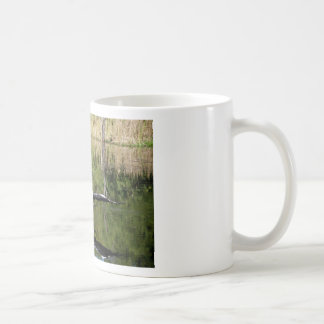 Pelican Coming In to Land Classic White Coffee Mug