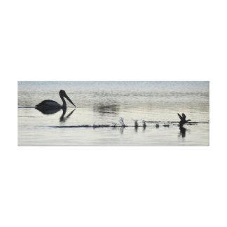 PELICAN & DUCK LANDING IN POND RURAL AUSTRALIA CANVAS PRINT