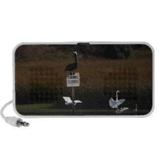 Pelican Egrets OrigAudio Doodle Speaker