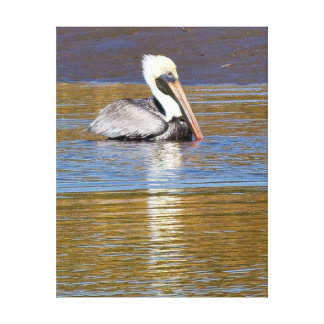 Pelican facing left blues and golds photo art canvas print