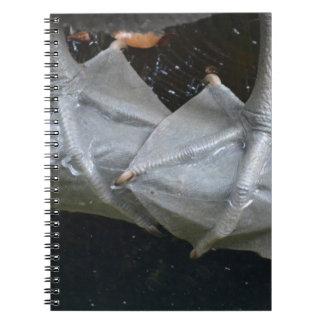 pelican feet closeup on log notebook