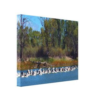 Pelican Fishing Frenzy, Canvas Print
