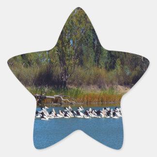 Pelican Fishing Frenzy, Star Sticker