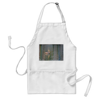 pelican floating in river colorful reflections adult apron