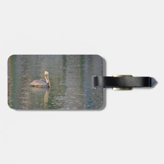 pelican floating in river colorful reflections bag tag