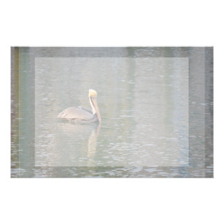 pelican floating in river colorful reflections stationery