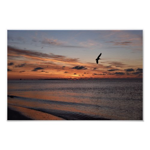 Pelican Flying at Sunrise, Dauphin Island, Alabama Poster
